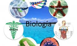 Definición de Ciencias Biológicas