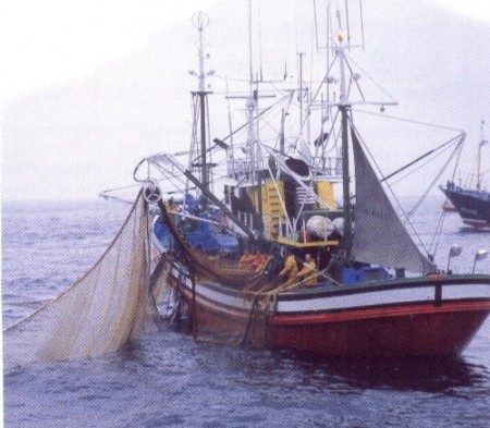 Pesca Marítima