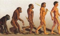 Definición de Teoría de Darwin