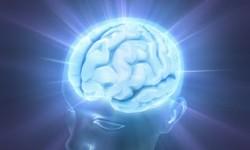 Definición de Consciente