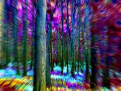 Alucinogeno