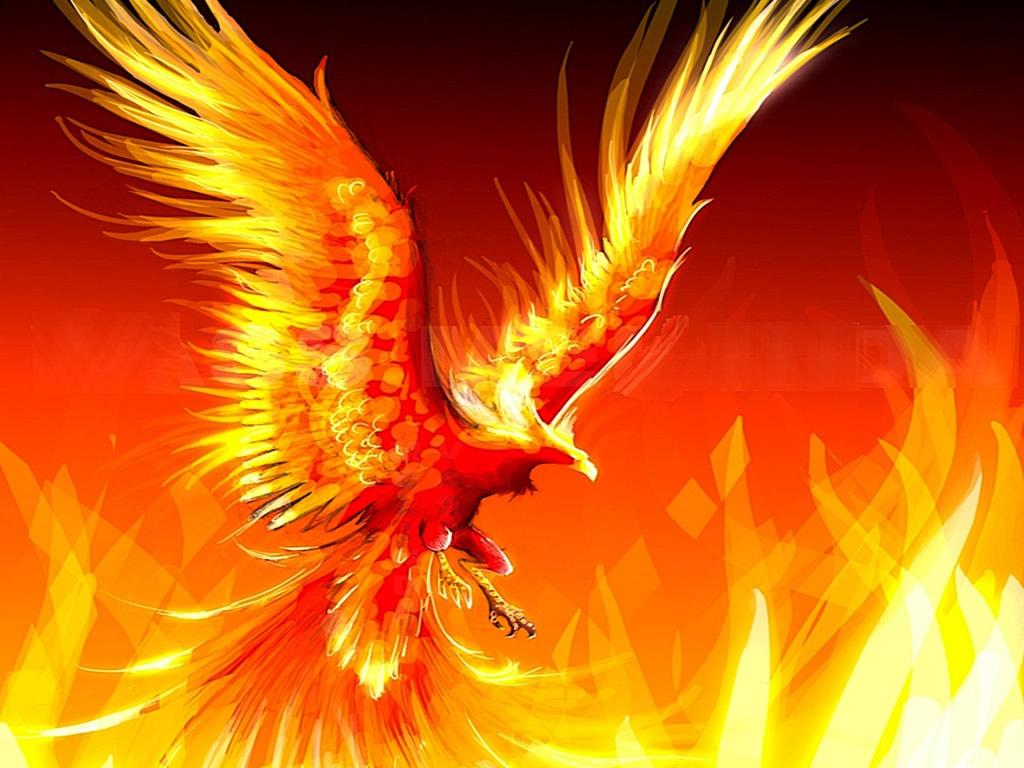 Resultado de imagen de ave fenix