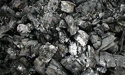 Definición de Carbón vegetal