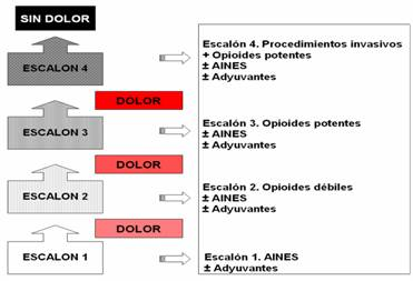 Escalera analgesica OMS 2