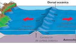 Definición de Dorsal Oceánica