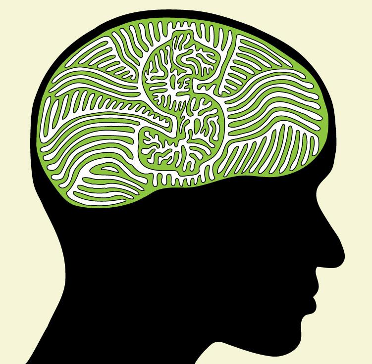 Resultado de imagen para neuroeconomia