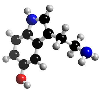 Resultado de imagen de foto de serotonina