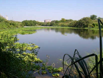 reserva_ecologica