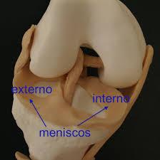 Meniscos 2