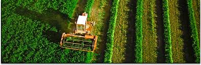 Ingeniería Agraria