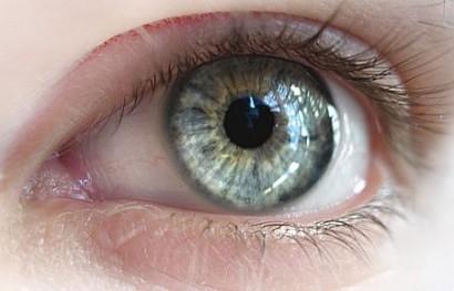Retina-ojos
