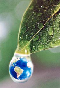 Salud-Ambiental2
