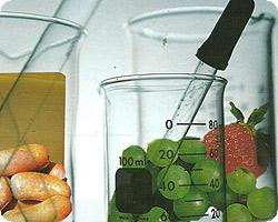 Ciencia-Alimentos