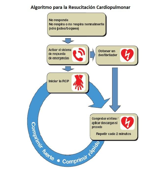 Resucitación cardiopulmonar algoritmo
