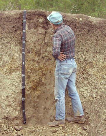 Definici n de edafolog a concepto en definici n abc for Significado de suelo