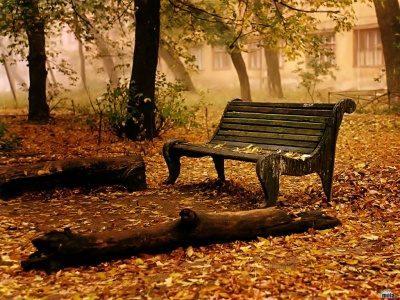 Lo mejor de la primavera ,el verano ,el otoño y el invierno