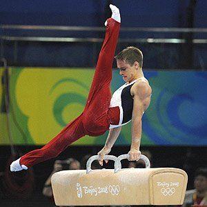 Definici n de potro concepto en definici n abc for Definicion de gimnasia