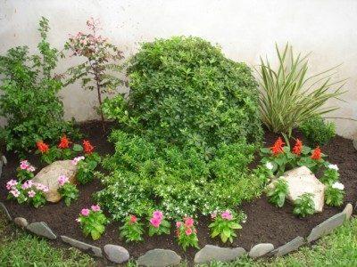 Definici n de abono concepto en definici n abc - Arreglar jardin abandonado ...