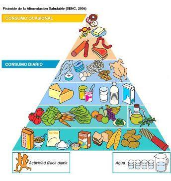 Definición De Alimentación Concepto En Definición Abc