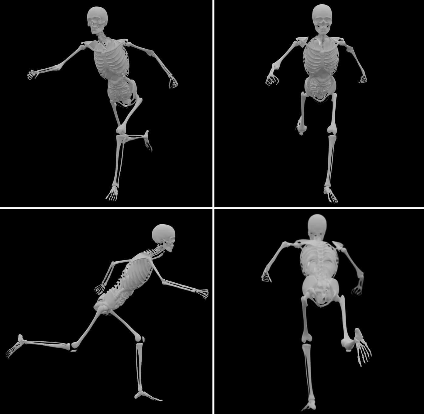 Definición de Huesos de la Pierna » Concepto en Definición ABC