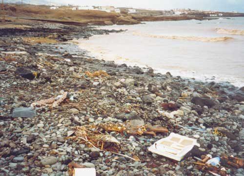 http://www.definicionabc.com/wp-content/uploads/contaminacion.jpg