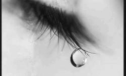 Definición de Lágrima