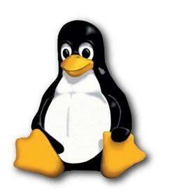 Definición de Linux (GNU/Linux)