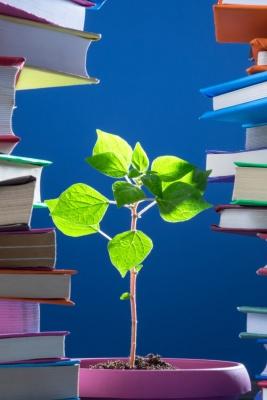 Educacion-Ambiental-2-libros