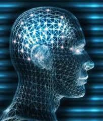 external image neurociencia.jpg
