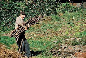 concepto de comunidad rural: