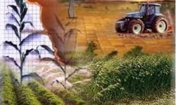 Definición de Producción Agrícola