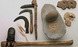 Definición de Revolución Neolítica