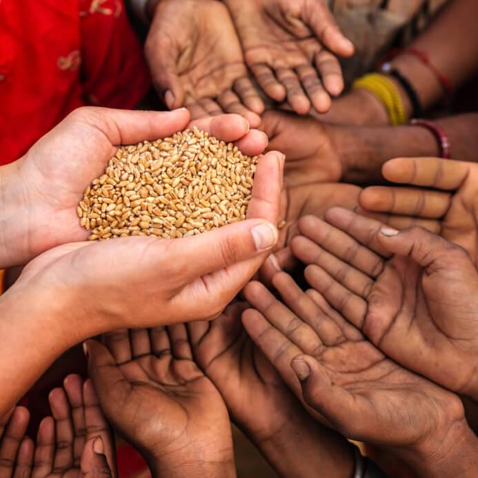 Definición de Solidaridad Social » Concepto en Definición ABC