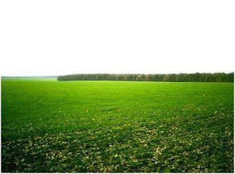 Definici n de suelo agr cola concepto en definici n abc for Suelo besar el suelo xd