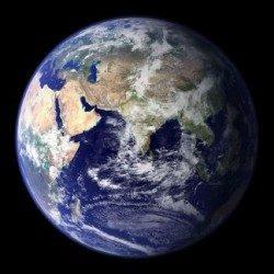 terrestre