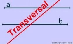 Definición de Transversal