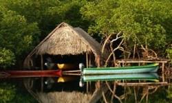 Definición de Turismo Ecológico